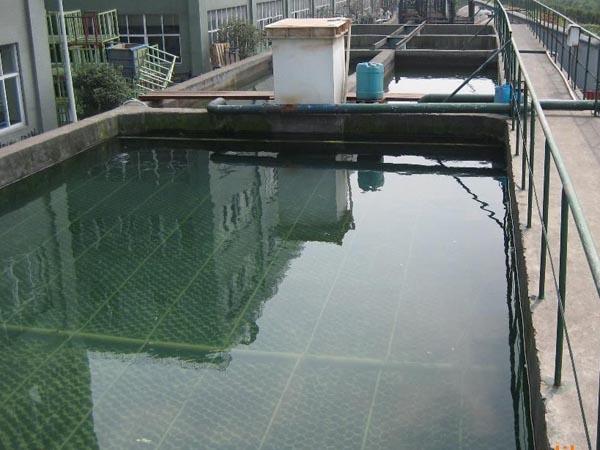 印染厂污水处理现场